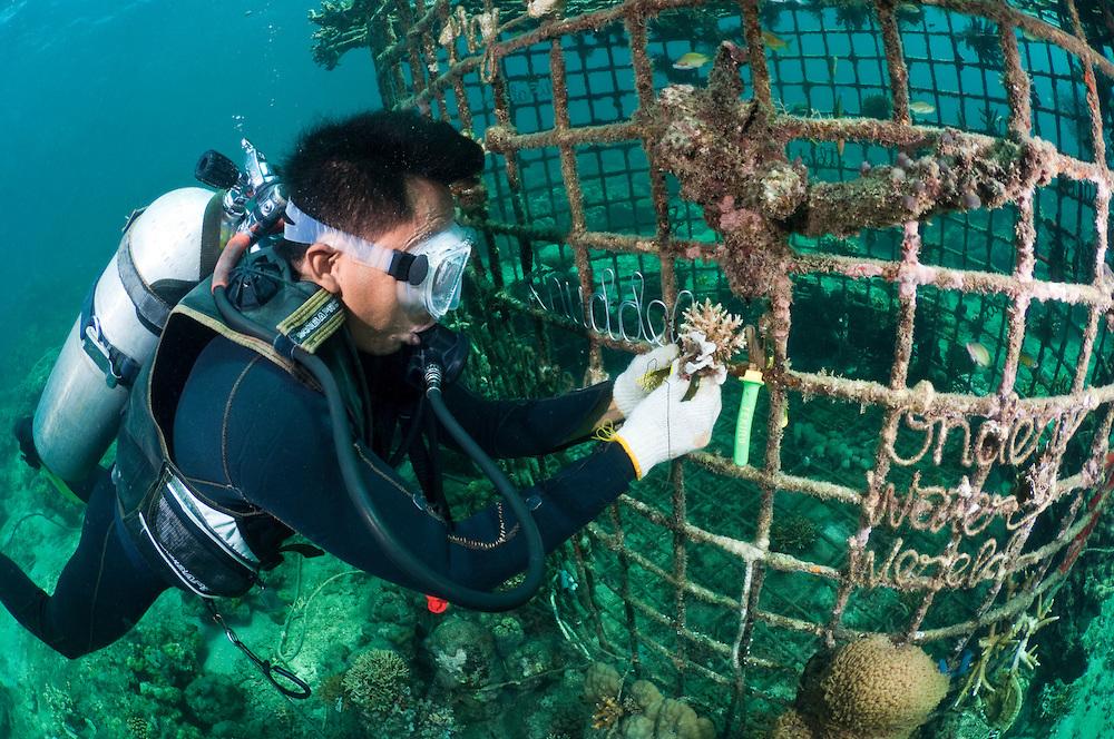 onderhoud met duiker