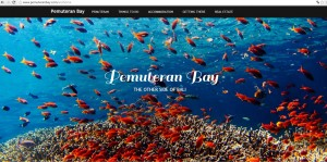 Pemuteran bay web 2